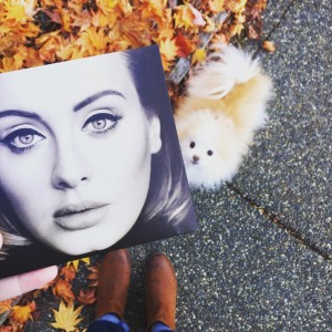 Friday Target trip to get Adele8217s new album8230and dog foodhellip