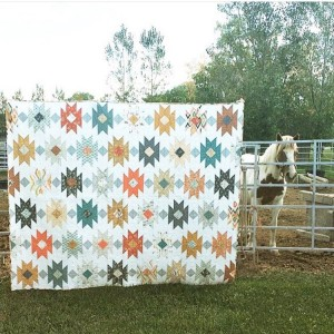 You know I can8217t resist a quilt and a horsehellip
